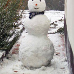 The Snowman Detox Diet Worked for Me