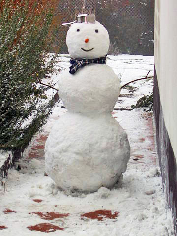 Can You Detox Like a Snowman?