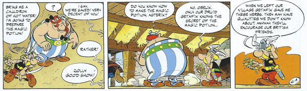 "Asterix makes tea: ""When we left our village Getafix gave me these herbs. They may have qualities we don't know about. Anyway they'll encourage our British friends."""