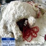 Star Wars Cakes: Tauntaun Guts with Summer Berries